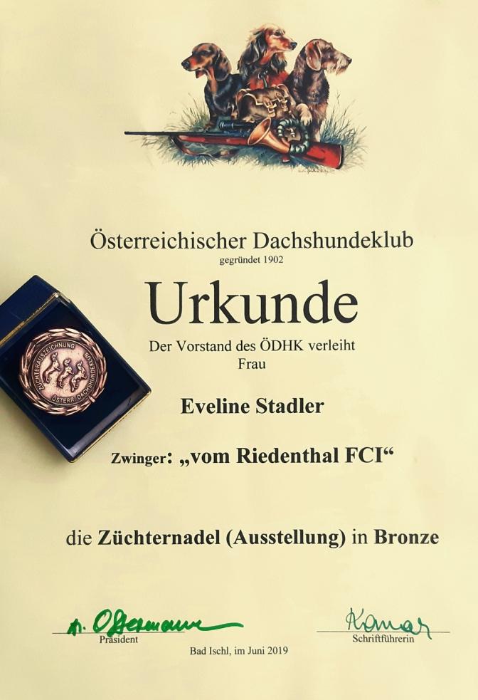 Züchternadel bronze Urkunde_klein